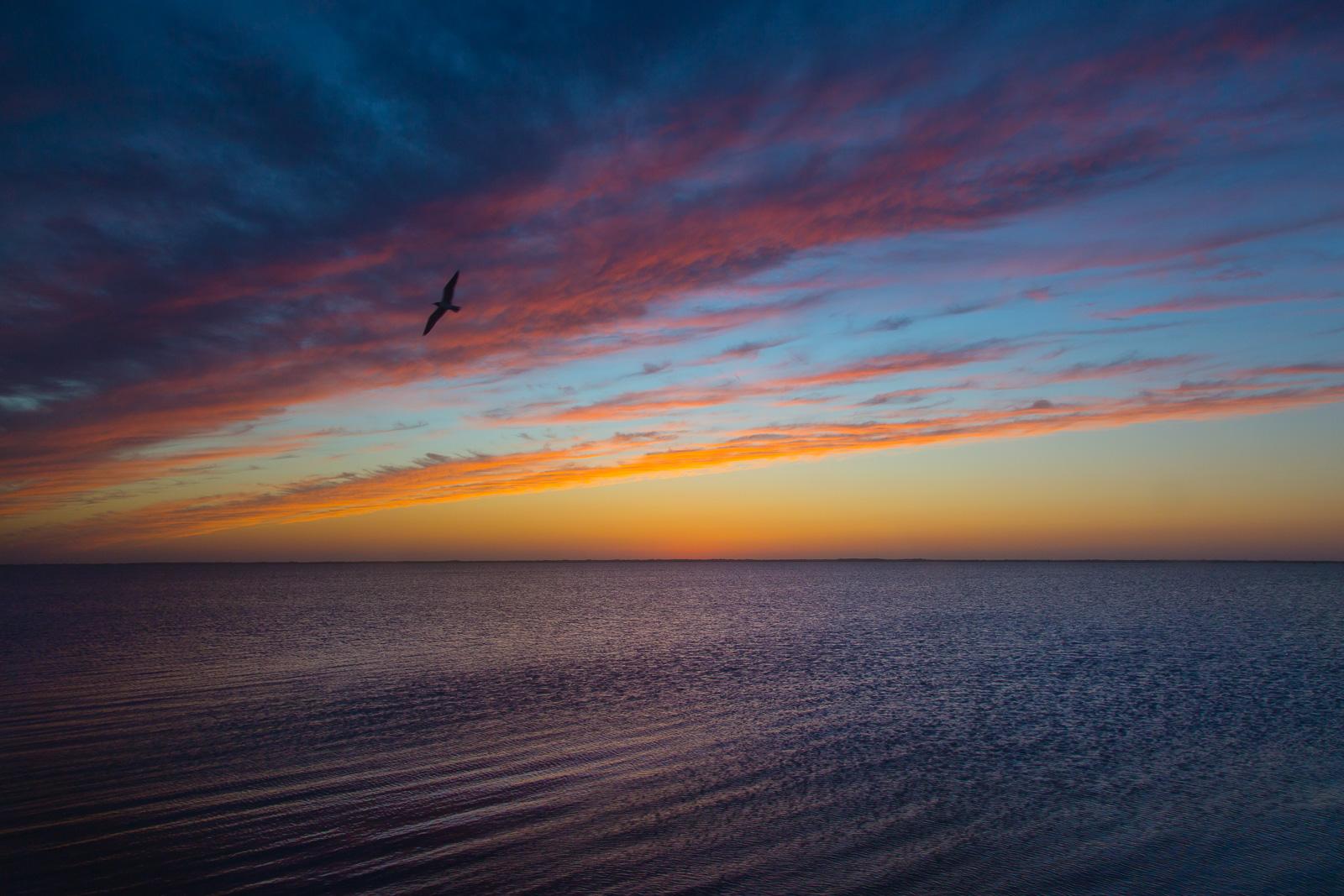 Bird Island Basin Sunset